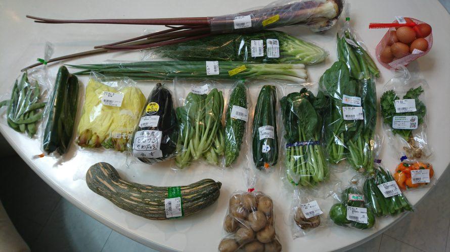 野菜を楽しむために(VRにて「スマイル阪神」を紹介)