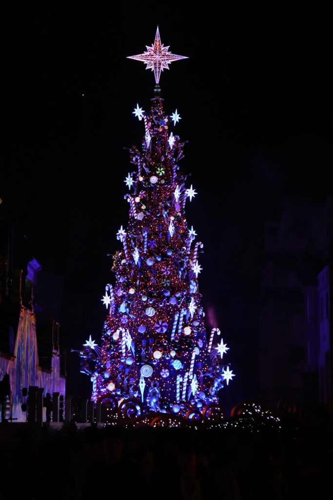 クリスマスツリー:夜間